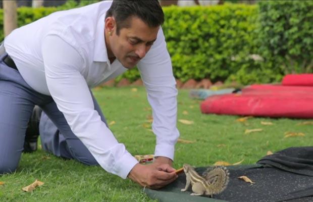 Salman-Khan-Squirrel