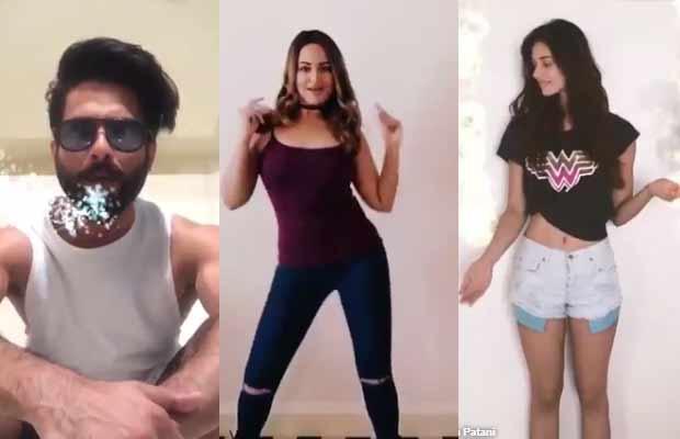 Shahid Kapoor Disha patani