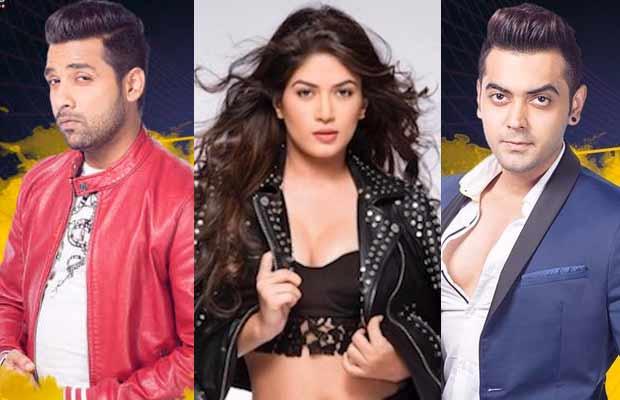 Bigg Boss 11 Poll: Who Should Be EVICTED This Week- Puneesh Sharma, Bandgi Kalra Or Luv Tyagi?